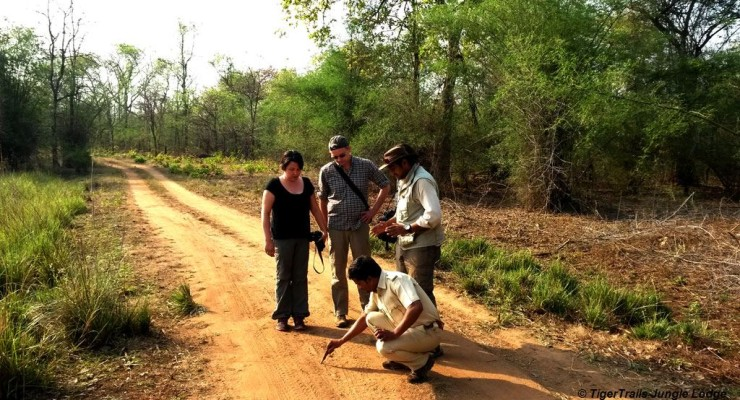 Guests-on-walking-safari-2